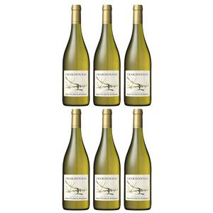 Ph. de Rothschild – Carton 6 bts Chardonnay Blanc 2019